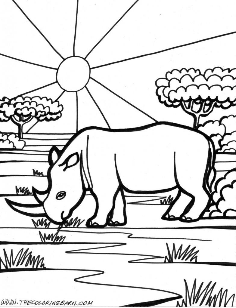 rinoceronte dibujos