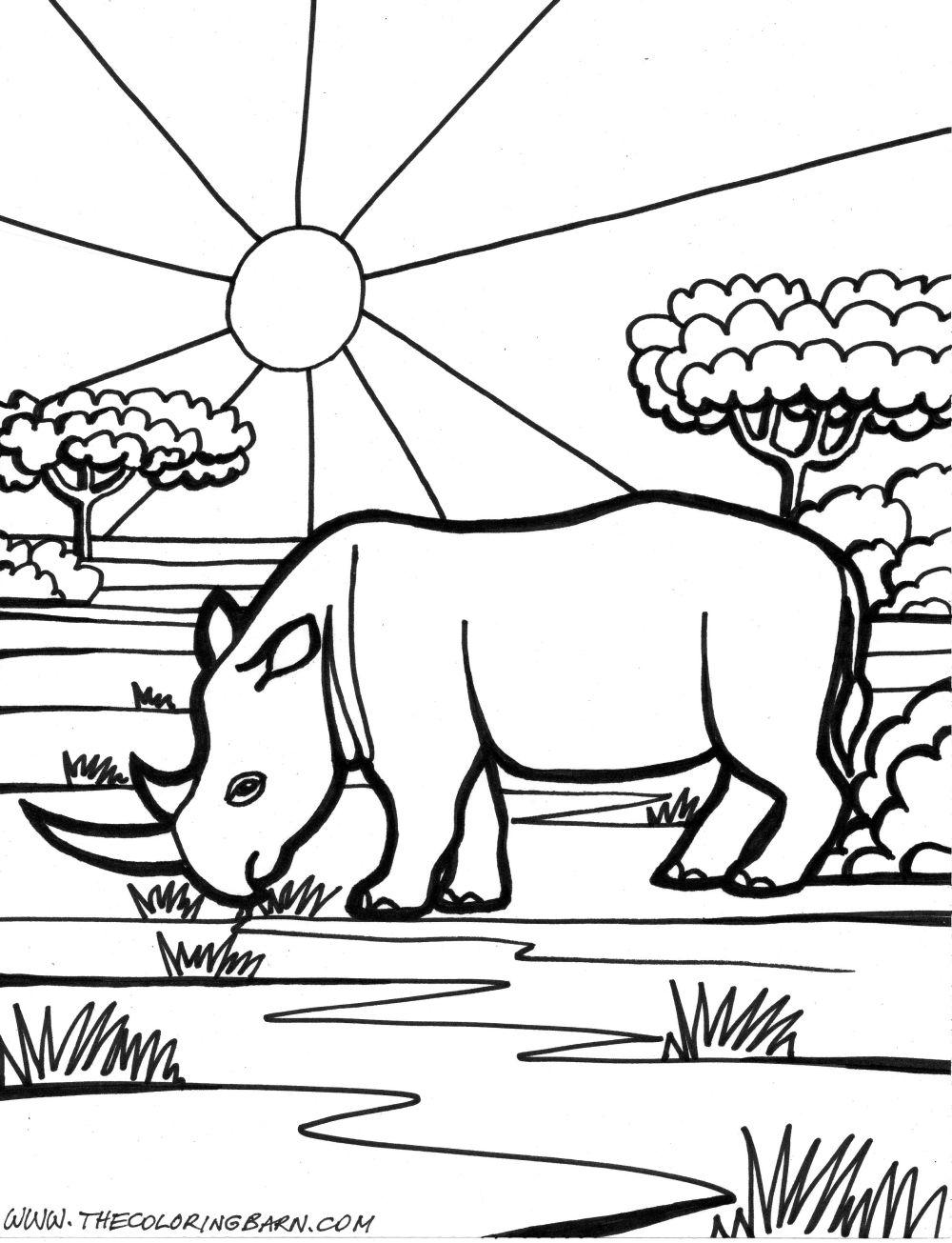 Dibujos de rinocerontes » RINOCERONTEPEDIA